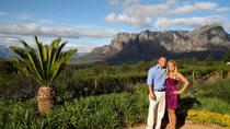 Vineyard Drop and Pick Wein Tour im Franschhoek Valley, Franschhoek, Private Day Trips