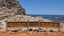 Cape Peninsula Guided Day Tour from Cape Town, Cape Town, Half-day Tours