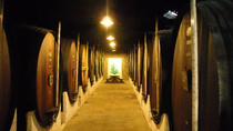 Setúbal Private Full Day Wine Tour with Tasting and Lunch at the Beach, Lisbon, Private Day Trips