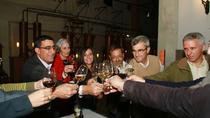 Setúbal Wine Tasting Full-Day Small-Group Tour from Lisbon, Lisbon, Food Tours