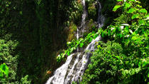 Guabara Adventure Day Trip: Waterfall Rappelling, Via Ferrata River Hike and Big Tree Forest Hike, ...