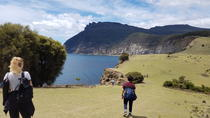 3 Day Walking Holiday - Mount Field Wilderness Walk, Tasman Peninsula and Maria Island, Hobart, ...