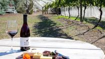 Full-Day Small-Group Wild Hobart Tour with Lunch, Hobart, Day Trips