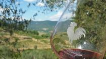 Greve in Chianti Wine Tasting and Winery Tour, Tuscany, Wine Tasting & Winery Tours