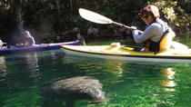 Manatee Kayak Tour at Blue Springs State Park, Orlando