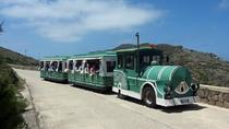 Tourist Train Excursion in Asinara Island including the Ferry, Alghero, Ferry Services