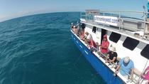 Carta privada de Key West, Key West, Fishing Charters & Tours