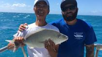 Key West Fishing Day Trip, Key West, Fishing Charters & Tours