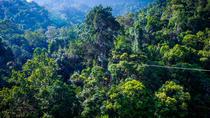 6 Flights: Guided Zipline Eco Adventure in Langkawi, Kedah, Nature & Wildlife