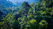 Guided Jungle Flight Zipline Tour on Langkawi Island, Kedah, Ziplines