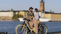 Stockholm E-Bike Tour with GPS - 5 Hours, Stockholm, Bike & Mountain Bike Tours