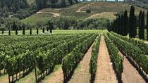 Wine Country Small-Group Tour from San Francisco with Tastings, San Francisco, Wine Tasting & ...