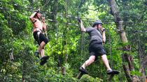 Combo Tijuca Forest Tour and Tree Canopy Ride for Small Groups, Rio de Janeiro, Ziplines