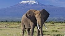 3 Days Amboseli & Tsavo West National Park Safari From Nairobi, Nairobi, Attraction Tickets