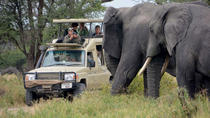 5Days Best Camping Safari in Tanzania Parks, Arusha, Multi-day Tours