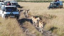 6Days Tanzania Tented Camping Safari Serengeti Manyara Ngorongoro Tarangire Park, Nairobi, Hiking &...
