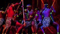 Safari Park Hotel Cat Dancers and Dinner Experience, Nairobi, Food Tours