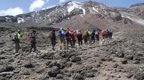 Trek Mount Kilimanjaro through Marangu Route, Arusha, Hiking & Camping