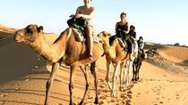 Balade à dos de chameau et marche, Marrakech, Day Trips