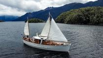 Morning Tea Cruise on Historic Motor Yacht from Te Anau, Te Anau, Helicopter Tours