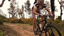 Algarve Downhill Off-road Bike Tour from Mount Foia, Lagos