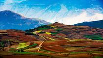 2 Days Dongchuan Red Land Tour, Kunming, Cultural Tours