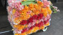 Half Day Flower Tour in Kunming, Kunming, Cultural Tours