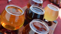 San Antonio Craft Cruisin' Sunday Brewery Tour, San Antonio, Sightseeing & City Passes