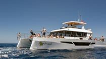 Afrikat Midday Fun Cruise, Gran Canaria, Day Cruises