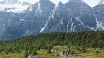 Larch Valley in Lake Louise -Tuesday and Friday Moderate Hike