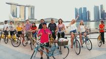 Fahrradabenteuer durch Civic District, Gardens und National Stadium, Singapore, 4WD, ATV & Off-Road Tours