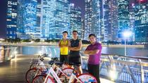 Private 4-Hour Singapore Night Cycling Tour: Night Cycle and Chill, Singapore, Bike & Mountain Bike...