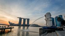 Private Singapore Shore Excursion or Airport Transit Tour (Half Day or Full Day), Singapore, Ports ...