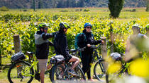 Gibbston Valley Guided Wine & Cycle Tour, Queenstown, Bike & Mountain Bike Tours
