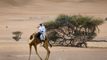 Private Tour of Wahiba Sands Desert with Wadi Bani Khalid by 4X4, Muscat, Private Day Trips