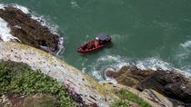 Private Rib Ride Adventure Boat Tour around the Isle of Anglesey, Wales, Jet Boats & Speed Boats