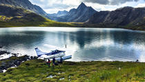 Explore Denali, Denali National Park, Air Tours