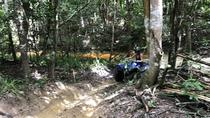 Cairns ATV Adventure Tour and Morning Skyrail, Cairns & the Tropical North, 4WD, ATV & Off-Road ...
