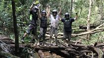 Cairns ATV Adventure Tour and Morning Train, Cairns & the Tropical North, 4WD, ATV & Off-Road ...