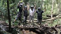 Cairns ATV Adventure Tour e Morning Train, Cairns e il Nord Tropicale, Tour su 4WD, ATV e fuoristrada
