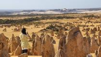 Full-Day Pinnacles Sandboarding and Yanchep National Park from Perth, Perth, Day Trips