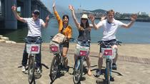 Fantastiska Hanriver Bike Ride Tour, Seoul, Turer med cykel och mountainbike