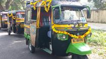 Full-Day Private Guided Kochi Tuk Tuk Tour with Hotel Pickup, Cochin