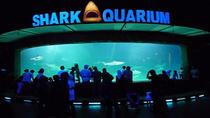 Sea World Admission Ticket, Jakarta, Attraction Tickets
