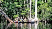 3-Hour Adventure Challenge Guided Kayak Tour, Orlando, Kayaking & Canoeing