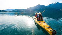 Half-Day Kayak Tour on Lake Wanaka, Wanaka