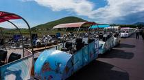 1-Hour Jeju Rail Bike Experience, Jeju, Attraction Tickets