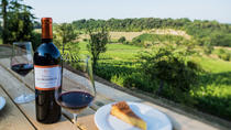 Bordeaux Wine Tour in St Emilion With a Picnic, Bordeaux, Wine Tasting & Winery Tours