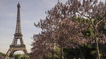 Paris in a Day: Montmartre, Notre Dame, Louvre, Eiffel Tower, Paris, Cultural Tours
