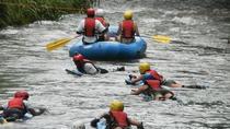 Falmouth Excursion: Rio Bueno River Rapid and Blue Hole, Falmouth, Ports of Call Tours